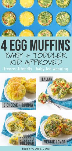 4 Breakfast Egg Muffins (Baby, Toddler + Kid-Approved) These healthy Breakfast Egg Muffins come in four different tasty combinations and are filled with v Healthy Toddler Breakfast, Baby Breakfast, Nutritious Breakfast, Breakfast Muffins, Toddler Food, Toddler Meals, Healthy Breakfast On The Go For Kids, Toddler Nutrition, Baby Led Weaning