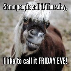 happy thursday funny quotes #happy #thursday #funny #happy & happy thursday funny , happy thursday funny hilarious , happy thursday funny humor , happy thursday funny lol , happy thursday funny mornings , happy thursday funny coffee , happy thursday funny quotes , happy thursday funny hilarious laughing