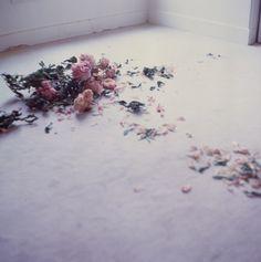 Pretty pink dead flowers, via floatingmemories on Tumblr