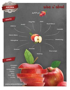 AROMA: Apple #wines #infografía