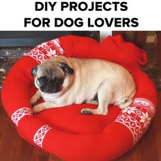 DIY Projects For Dog Lovers #pets #DIY #treats #spacesave #dogs