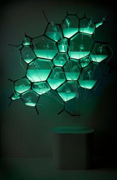 "Phillips uses bioluminescent bacteria to make light fixtures. ""Biological products could be self-energizing, adaptive, responsive, self-repairing, act as biological sensors to environmental conditions, and change the way we communicate information."""
