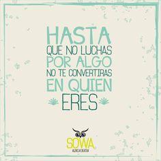 ¡Feliz noche para todos nuestros seguidores! - @SowaDG #Cúcuta #Colombia #SowaDG #FrasesSowa #Motivación #AgenciaCreativa
