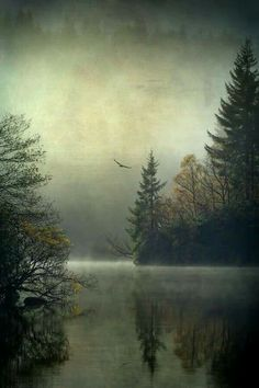 Loch Ard , The Trossachs