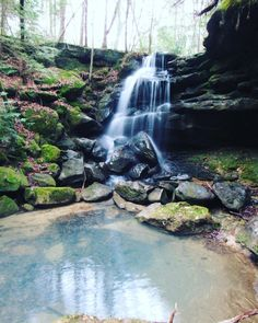 """Sam Calhoun on Instagram: """"One of my favorite spots in Bankhead National Forest.  There's hundreds of falls out there, and 99% of them are unnamed.  #explore…"""""""