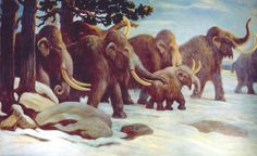 DNA proves mammoths mated beyond species boundaries http://www.sciencetotal.com/news/2016-04-dna-proves-mammoths-mated-beyond-species-boundaries/