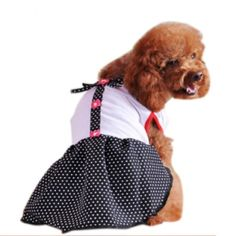 Bow-Wow Sexy Dog Dress finish with Black Dot Skirt.