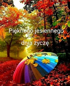 Good Morning Funny, Fall For You, Welcome, Neon Signs, Seasons, Outdoor Decor, Movie Posters, Beautiful Things, Polish