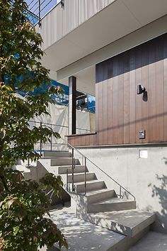 東京都世田谷区S邸-建築家・本間至|ザ・ハウスで叶えた夢の家|ザ・ハウス@建築家