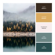 Color palette, fall, cool, mustard, green, sage, neutral