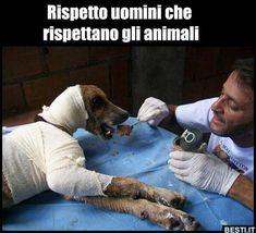 Rispetto uomini che rispettano gli animali