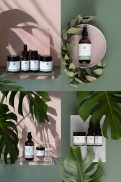 Natural Skincare Product Photography and Styling for Nourishe Natural Skincare. Roz McIntosh Photography and Styling. Natural, minimal, neutral asthetic with leaf details.