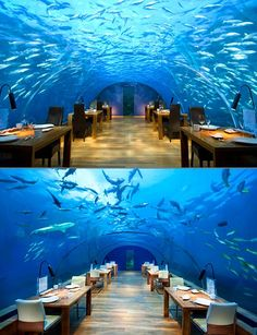 This amazing restaurant is situated in Rangali Islands of Maldives. Its under 16 ft below the sea level. The guests can have a view of 180° of reef and marine drive. Pretty cool!