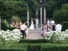 Genial Wedding Ceremony In The Gladney Rose Garden At The Missouri Botanical Garden .