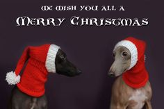 I need help with a pattern for this.  I need to make one for my friend's greyhound.  Not so much santa hat colors, just making up a similar pattern