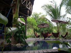 Taras, balkon, tropiki, palmy, egzotyczny balkon. Zobacz więcej na: https://www.homify.pl/katalogi-inspiracji/14672/markizy-i-parasole-na-taras-i-do-ogrodu