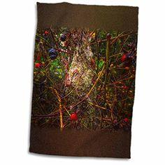 DYLAN SEIBOLD - PHOTOGRAPHY - BIRD NEST - 11x17 Towel (tw... https://www.amazon.com/dp/B01LZUKR5X/ref=cm_sw_r_pi_dp_x_SsVcybZSK9JX0