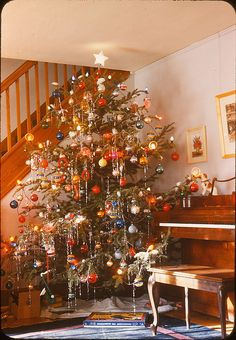 Christmas Tree & Piano 1946 This is not a neatly decorated tree like most but, I think it's a happy, pretty, fun Christmas tr Christmas Tree Decorations, Christmas Tree Ornaments, Christmas Lights, Xmas Trees, Vintage Christmas Photos, Vintage Holiday, Noel Christmas, Winter Christmas, 1950s Christmas