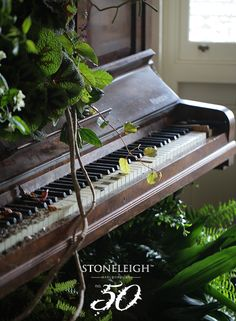 Tasting notes of change as nature takes hold #Stoneleighno50 #Stoneleighwine #wild #piano #nature #interior