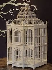 Resultado de imagen de cages