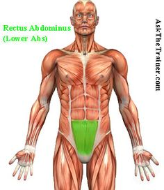 Lower Abs Workout, lower abs workout for men,   Man Boob   Lose Chest Fat