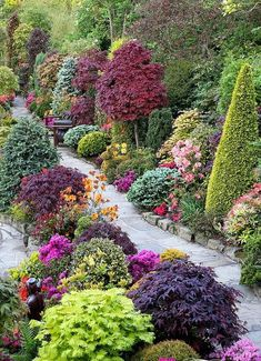 Colorful shrubs and trees