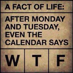 Funny midweek humor