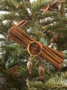 natural christmas tree 9 Compostable or Edible Christmas Tree Decorations Natural Christmas Ornaments, Noel Christmas, Green Christmas, Christmas Tree Ornaments, Christmas Crafts, Diy Ornaments, Holiday Tree, Homemade Christmas Tree Decorations, Cinnamon Ornaments