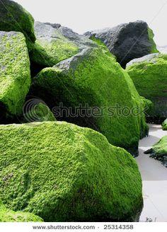 Green rocks.