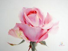 Розы... Художник - акварелист La Fe, Тайланд.: violika_1