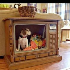 Great idea!--- if only we had the space,,,,and the old TV