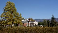Corley Family Winery stands amongst the Best Napa Wineries in the Valley. Experience our historic family property today. Best Wineries In Napa, Napa Valley Wineries, Yountville Wineries, Pulled Pork Sliders, Wine Tasting, Red Wine, Vineyard, Places To Go, House Styles