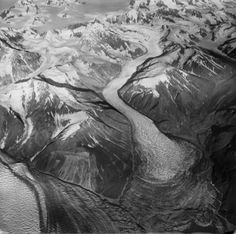 Variegated Glacier winds through the Saint Elias Mountains in Alaska, terminating near Yakutat Bay.  —Credit: Photograph by Austin Post. 1965. Variegated Glacier: From the Glacier Photograph Collection. Boulder, Colorado USA: National Snow and Ice Data Center. Digital media.