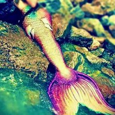 ♒ Mermaids Among Us ♒ art photography paintings of sea sirens & water maidens -  Colorful tail from Merbellas