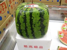 **** Top 10 Expensive Fruits In The World/Expensive Fruits Of Japan****