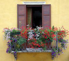 5. Особенно гармонично смотрятся цветы на желтой стене. Сегодня такие балконы стали большой редкостью. Люди больше ценят практичность, переделывая балконы в лоджии. (http://gazda.ua/ru/uslugi/balkonyi-pod-klyuch.html). Старые балкончики постепенно начинают уходить в историю.