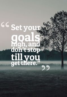Set your goals high, and don't stop till you get there. thedailyquotes.com