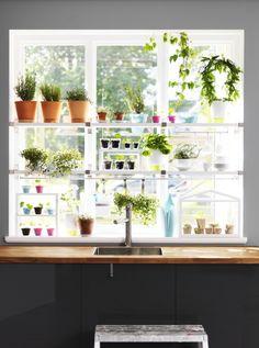 ikea-window-garden-gardenista