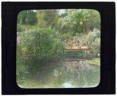 "[""Grey-Croft,"" Stephen Swete Cummins house, Huntting Lane, East Hampton, New York. Japanese iris garden, rustic bridge] LOC. Reminds me of Monet's garden."