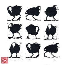 Ellen van Putten - Coot! Linoprint uit de reizende linoleumdrukkerij Art To Take. Mobile Art, Kitchen Art, Animals, Animales, Animaux, Animal Memes, Animal, Animais, Dieren