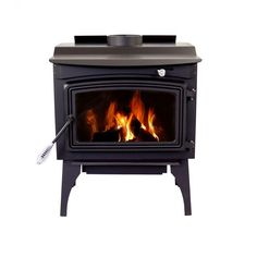 Which Type of Fireplace Is the Best? Best Wood Burning Stove, Wood Burning Heaters, Small Mobile Homes, Wood Pellet Stoves, Wood Pedestal, Wood Pellets, Chrome Handles, Fireplace Accessories, Ace Hardware