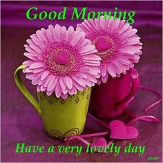 Good Morning Have A Very Lovely Day