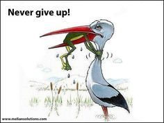Lesson of today ... get up and don't ever give up!