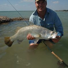 Barramundi is one of the best fighting and eating fish found in northern Australia.