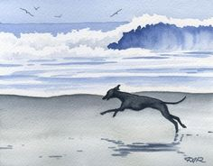 italian greyhound beach photo italiangreyhoundbeach_zpsd5ba86ca.jpg