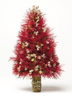 Summer Christmas, Christmas Themes, Christmas Presents, Christmas Wreaths, Christmas Crafts, Merry Christmas, Holiday Decor, Xmas Flowers, Kiwiana