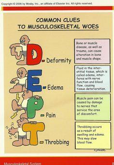 Common Clues to Musculoskeletal Woes Nursing Study Tips, Nursing Board, Nursing Assessment, Nursing Mnemonics, Pathophysiology Nursing, Pharmacology, Med Surg Nursing, Rn School, Edema
