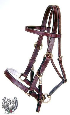 Australian Leather Bridle/Halter Combo & Matching Reins #AussieBridleHalterCombo