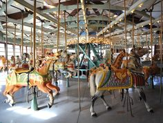 One of my fondest childhood memories was riding the carousel horse in Prospect Park,  Brooklyn, NY