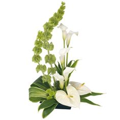 A modern tall container arrangement featuring white Calla Lilies, white Anthurium and Chrysanthemums. Flowers are arranged in floral foam for long lasting freshness and easy display. Price	£ 47.95